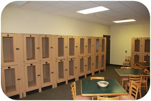 Locker Storage